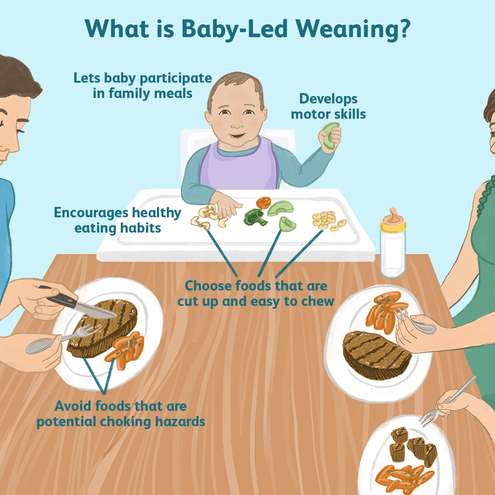 Starting Solid Foods With Baby-Led Weaning