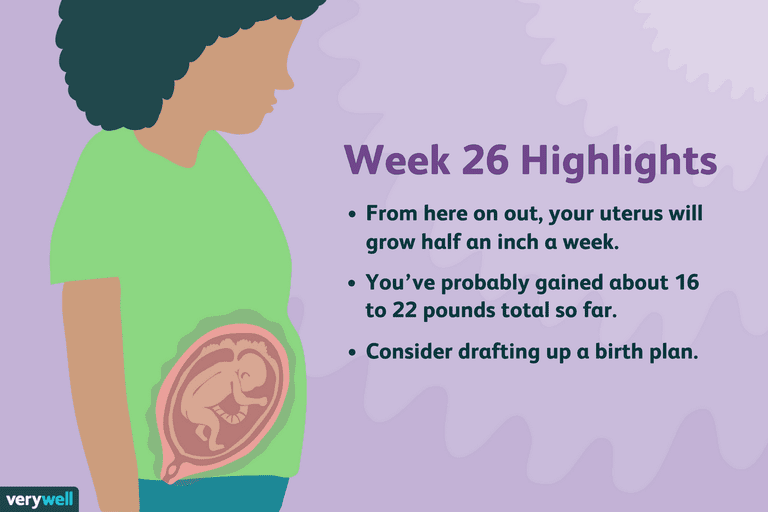 week 26 pregnancy highlights