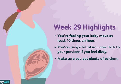 week 29 pregnancy highlights