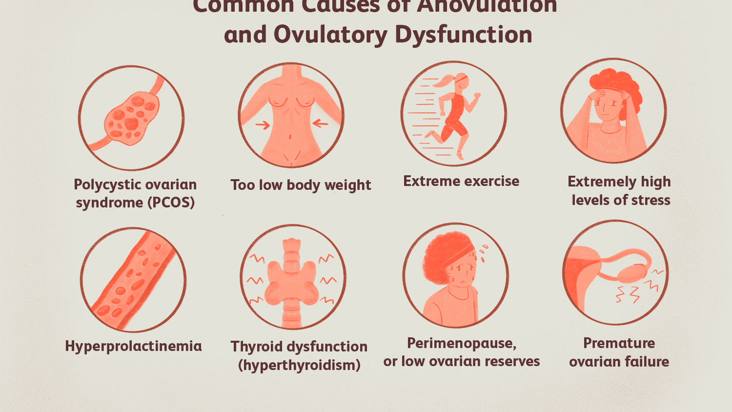 can weight loss delay ovulation