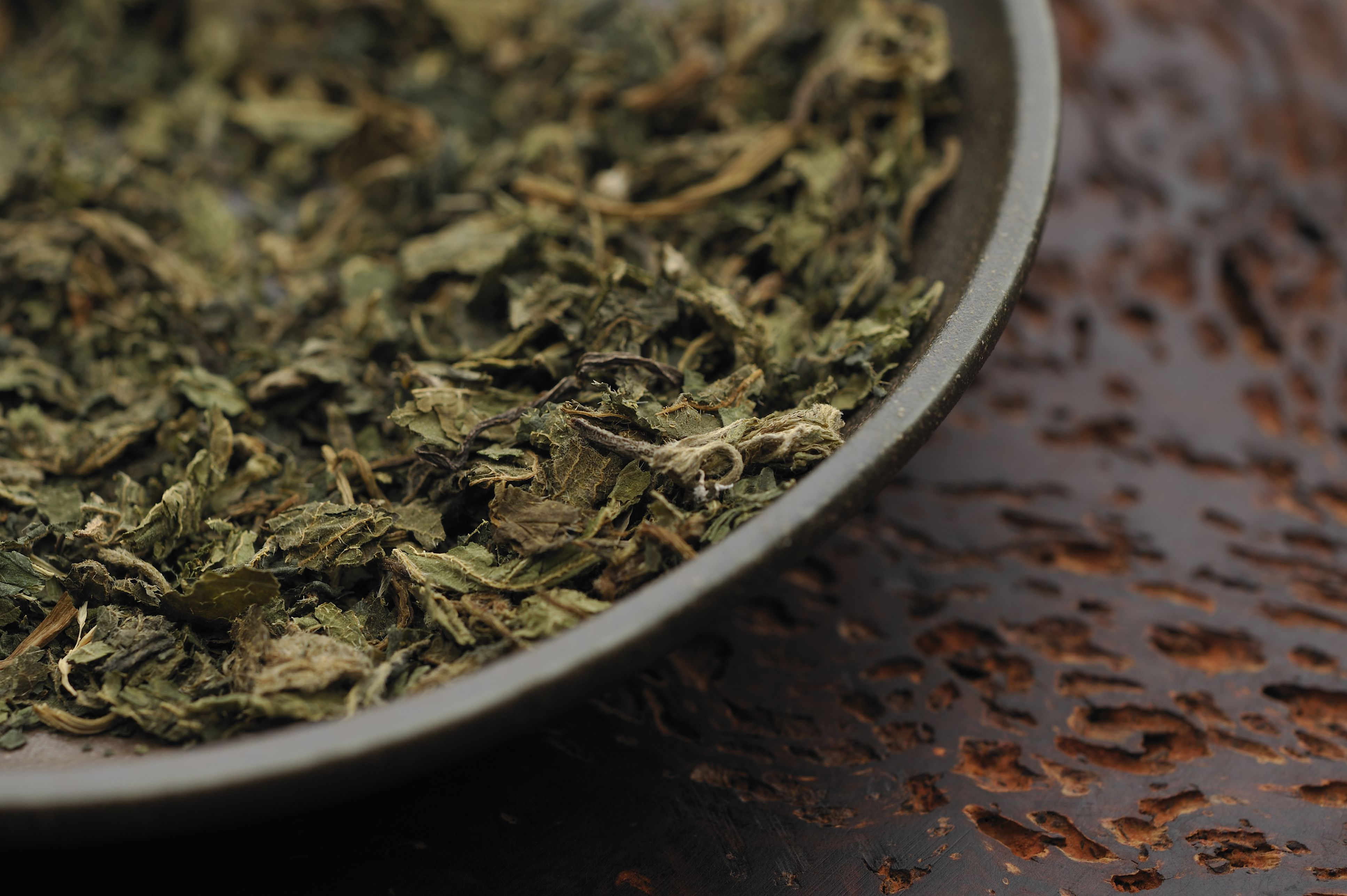Stinging nettle dried herb in bowl