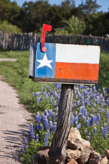 Get immunization rates in Texas schools.