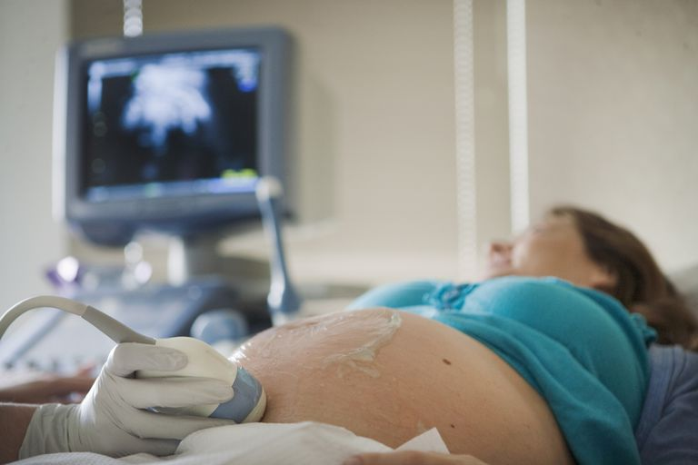Pregnant Woman Receiving a Ultra-Sound from Her Perinatologist