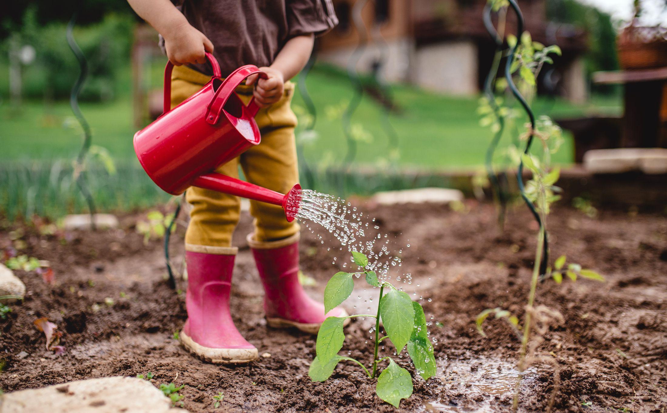 The Best Kids Gardening Tools Of 2020