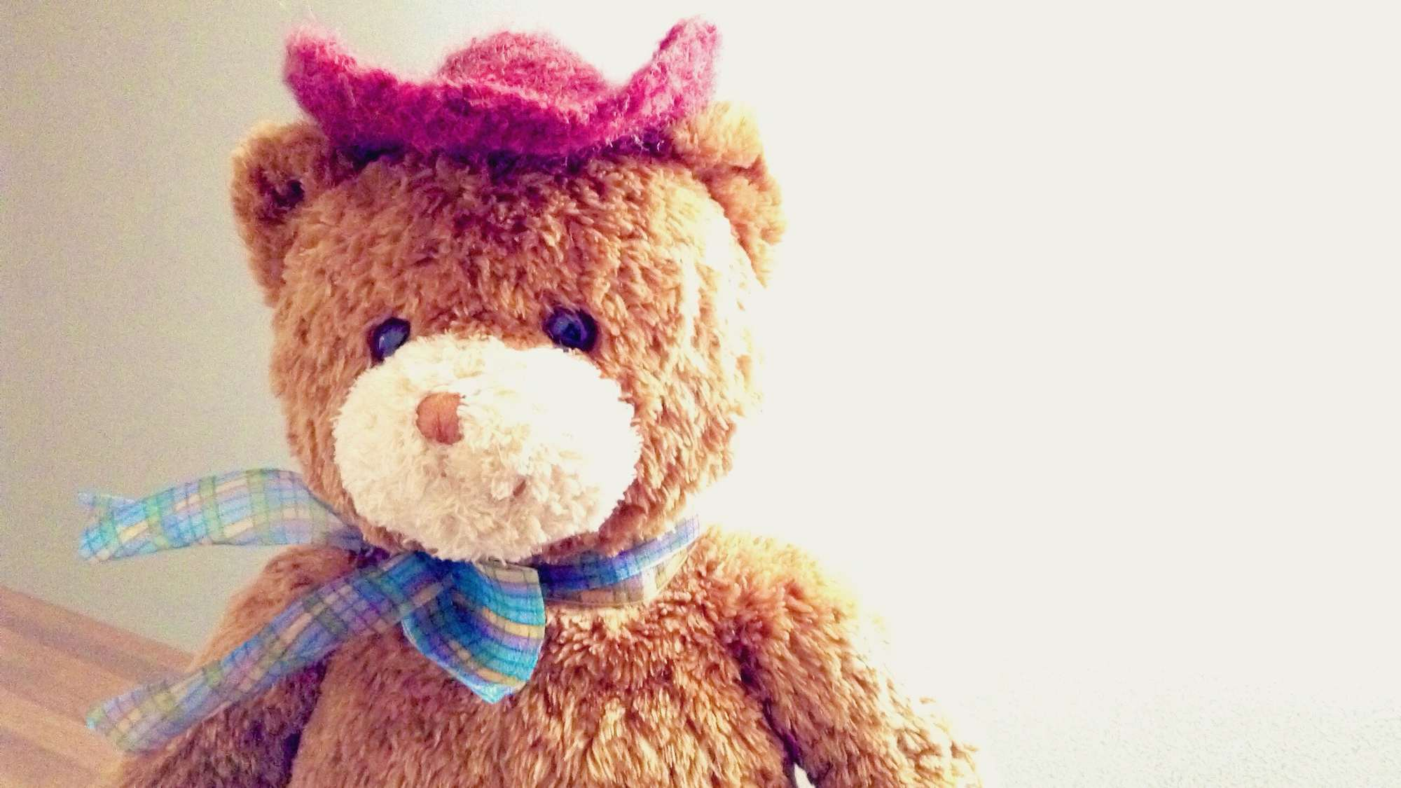 Close-Up Of Teddy Bear At Home