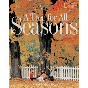 Tree For All Seasons by Robin Bernard