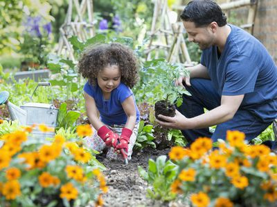 Family garden - father and daughter gardening together