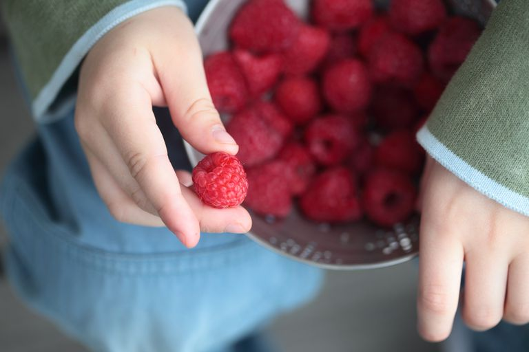 toxic chemicals environment - bowl of raspberries on child's lap