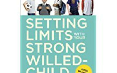 10 Signs You Are Raising a Strong-Willed Child
