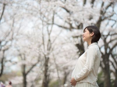 Pregnant woman and cherry blossom