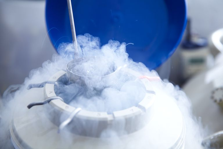 Cryopreservation chamber for eggs and embryos after IVF