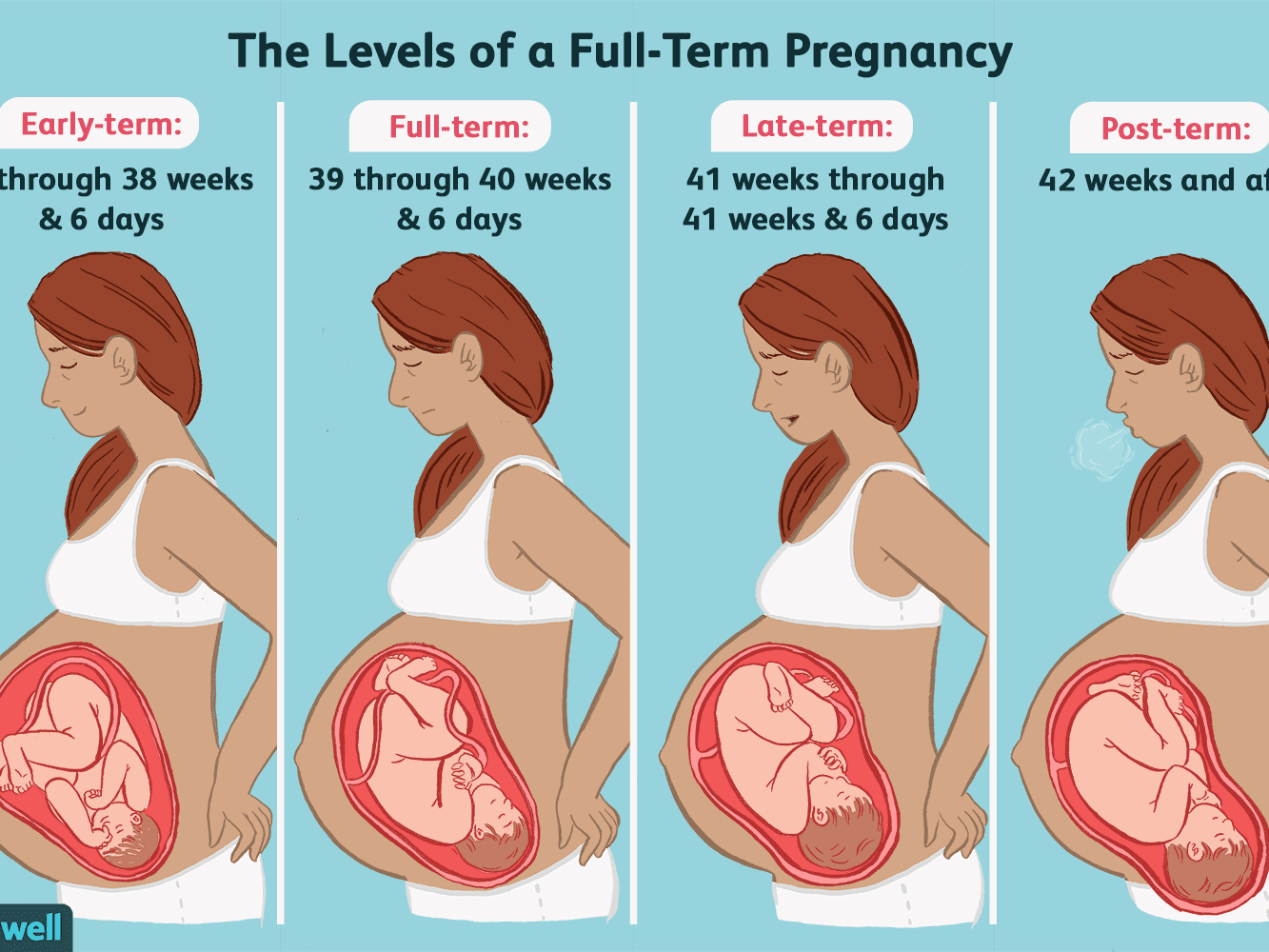 How Far Along Am I | Find out Using our Pregnancy Calculator
