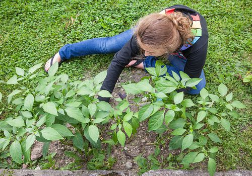 Teach your teen how to grow a garden.