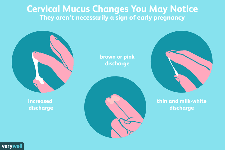 cervical mucus changes