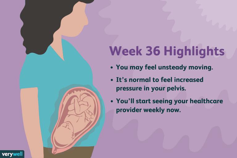 week 36 pregnancy highlights