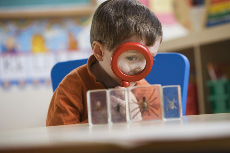 Caucasian boy looking a spider in classroom with magnifying glass