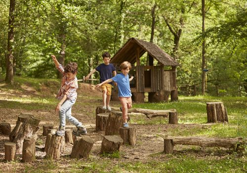 Children playing on logs in woods