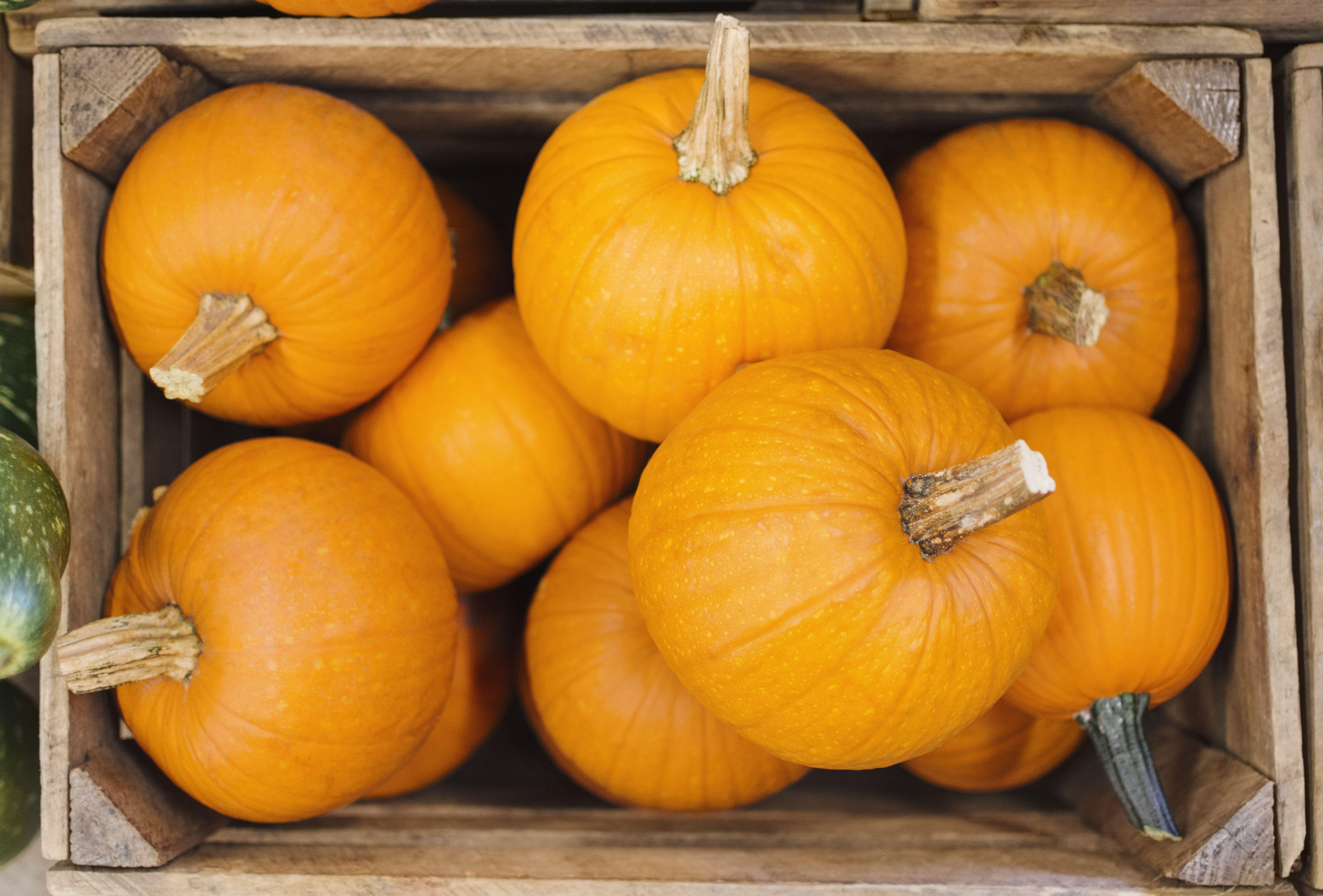 Pumpkins in box