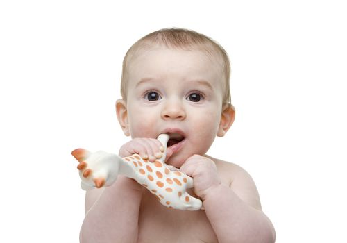 Baby mouthing a toy giraffe