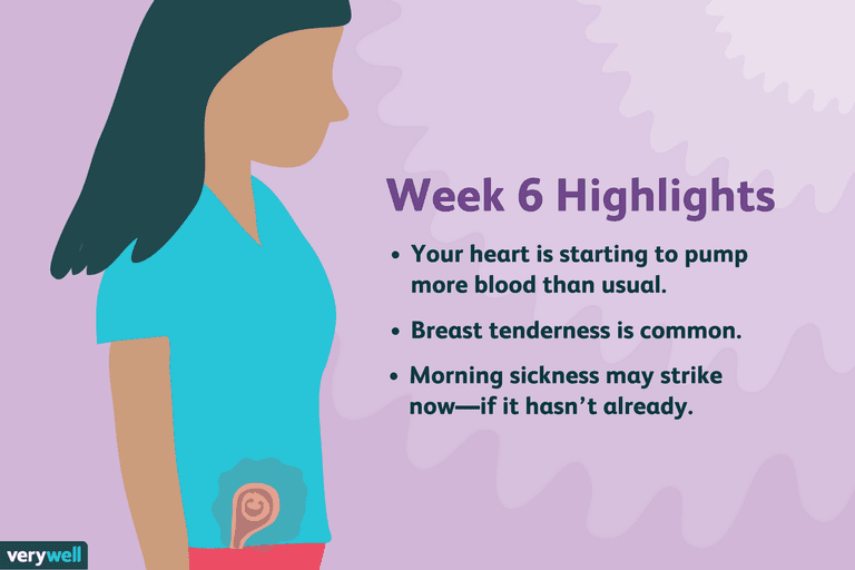 week 6 pregnancy highlights