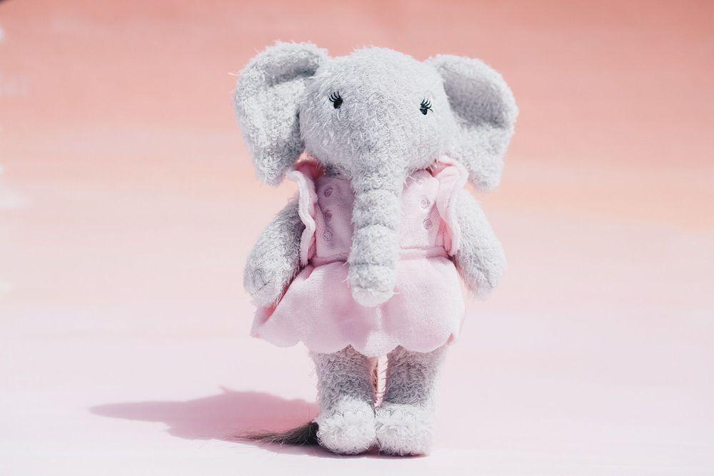The Elephant Project Kiki