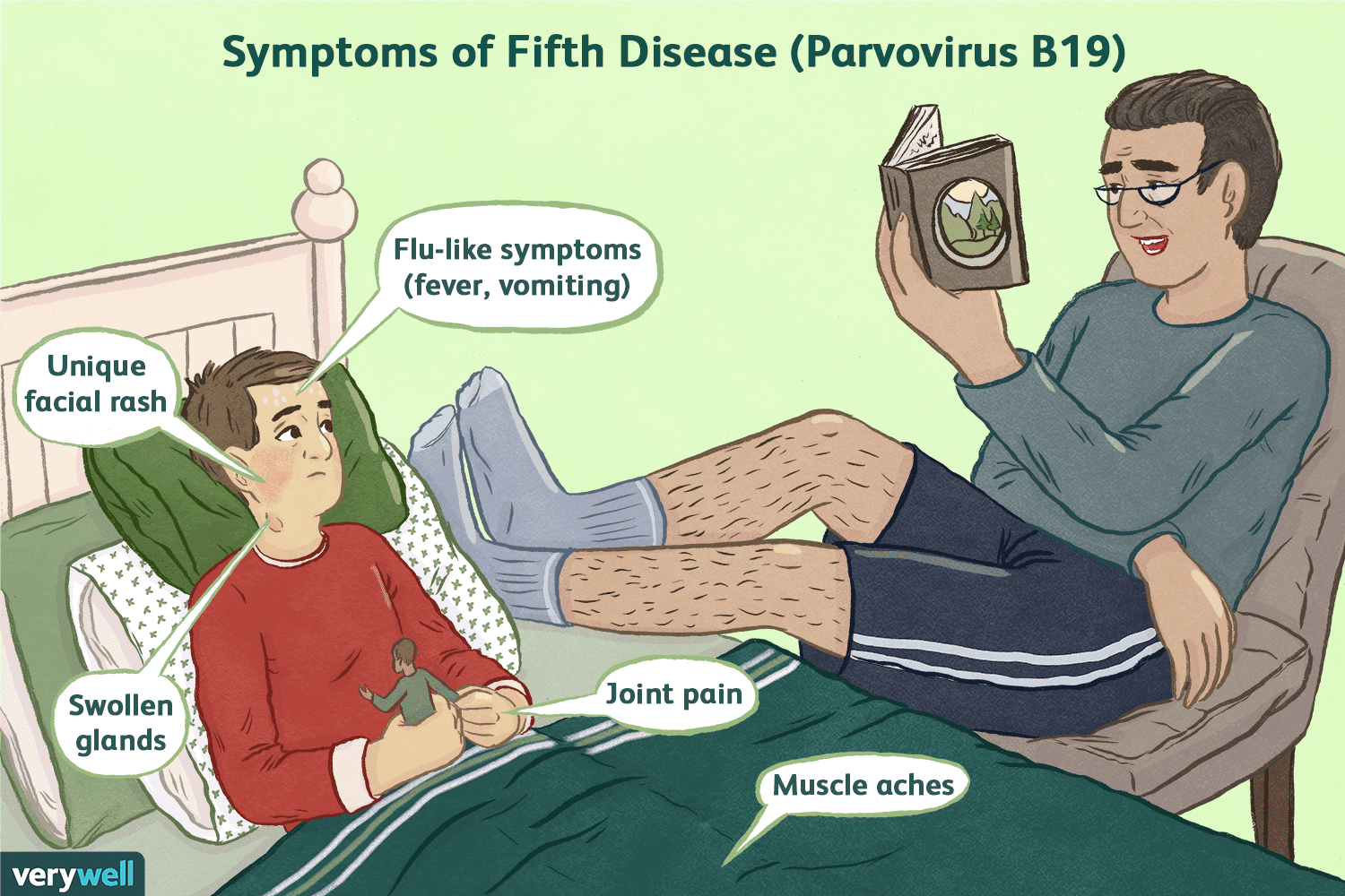 An Overview of Fifth Disease and Parvovirus B19