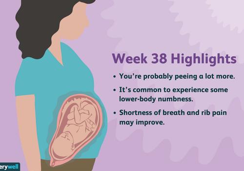 week 38 pregnancy highlights