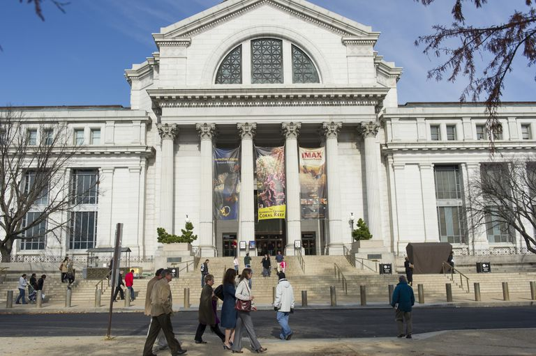 Virtual Tours of Natural History Museums