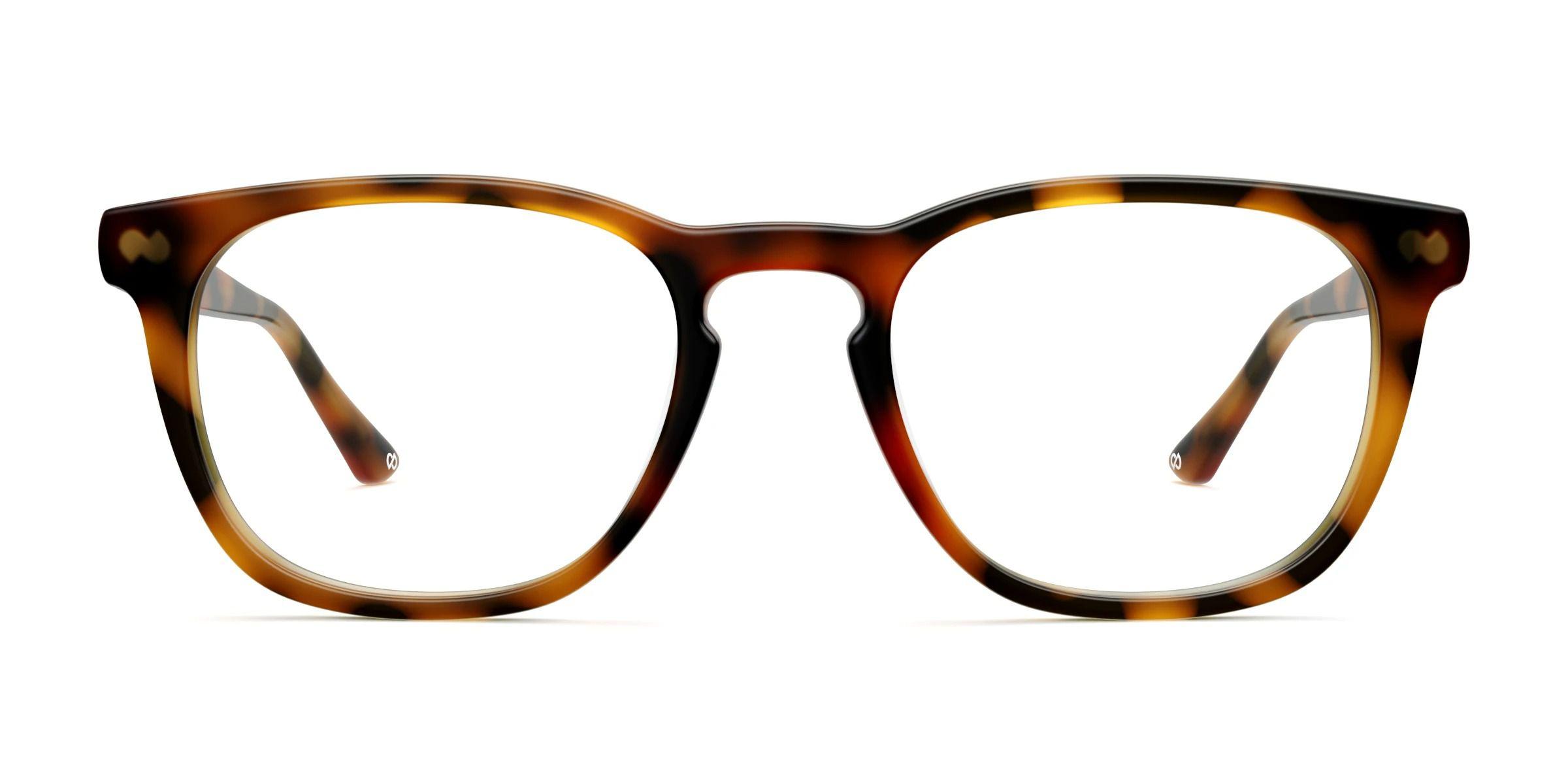 Pair Eyewear Twain