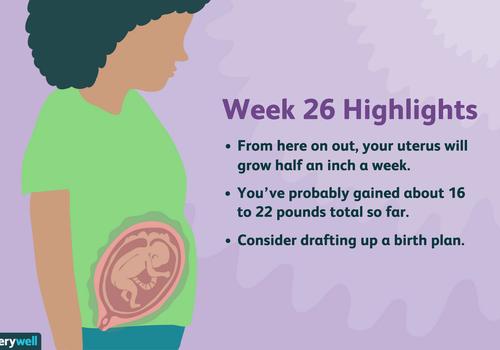week 26 pregnancy highlights