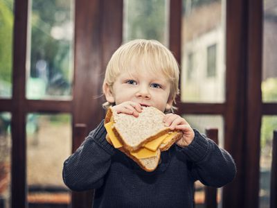 Child eating a cheese sandwich