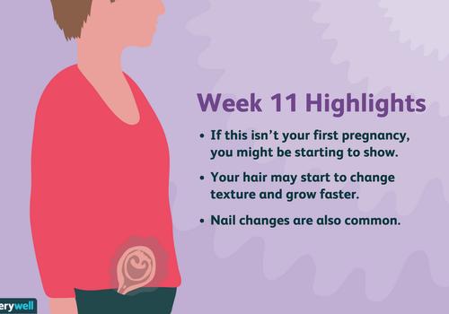 week 11 pregnancy highlights