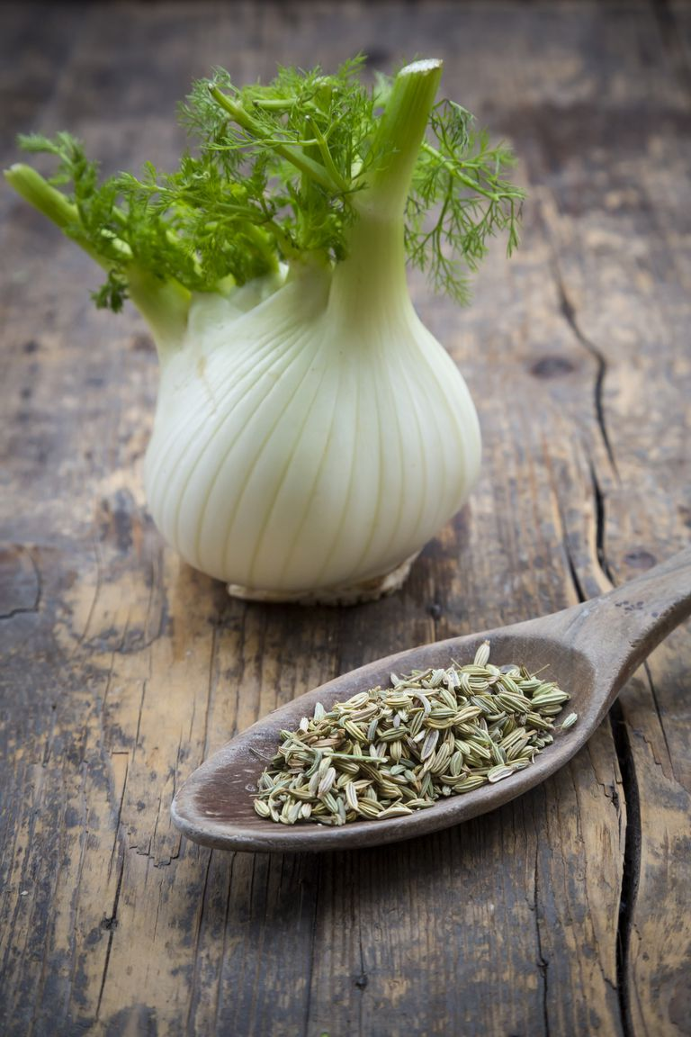 Fennel corm bulb and wooden spoon of fennel seeds (Foeniculum vulgare) on wooden table