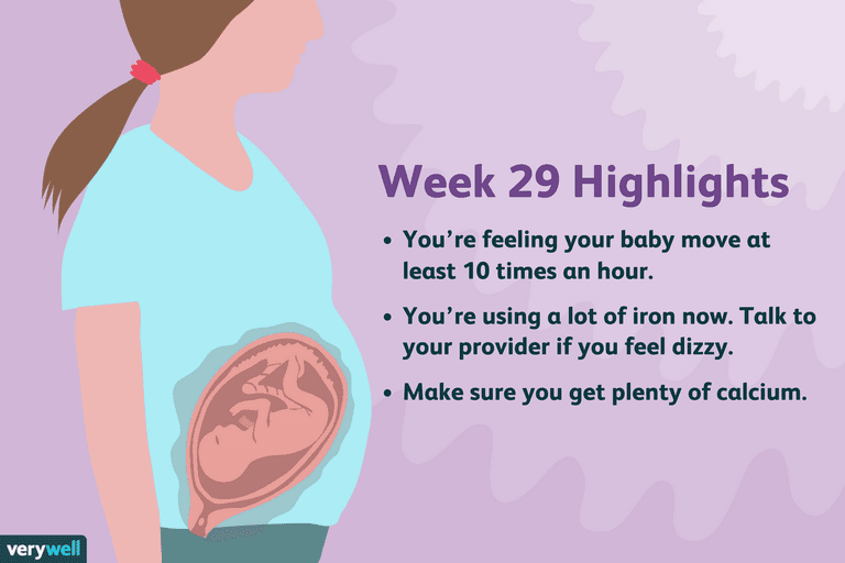 week 29 pregnancy highlights