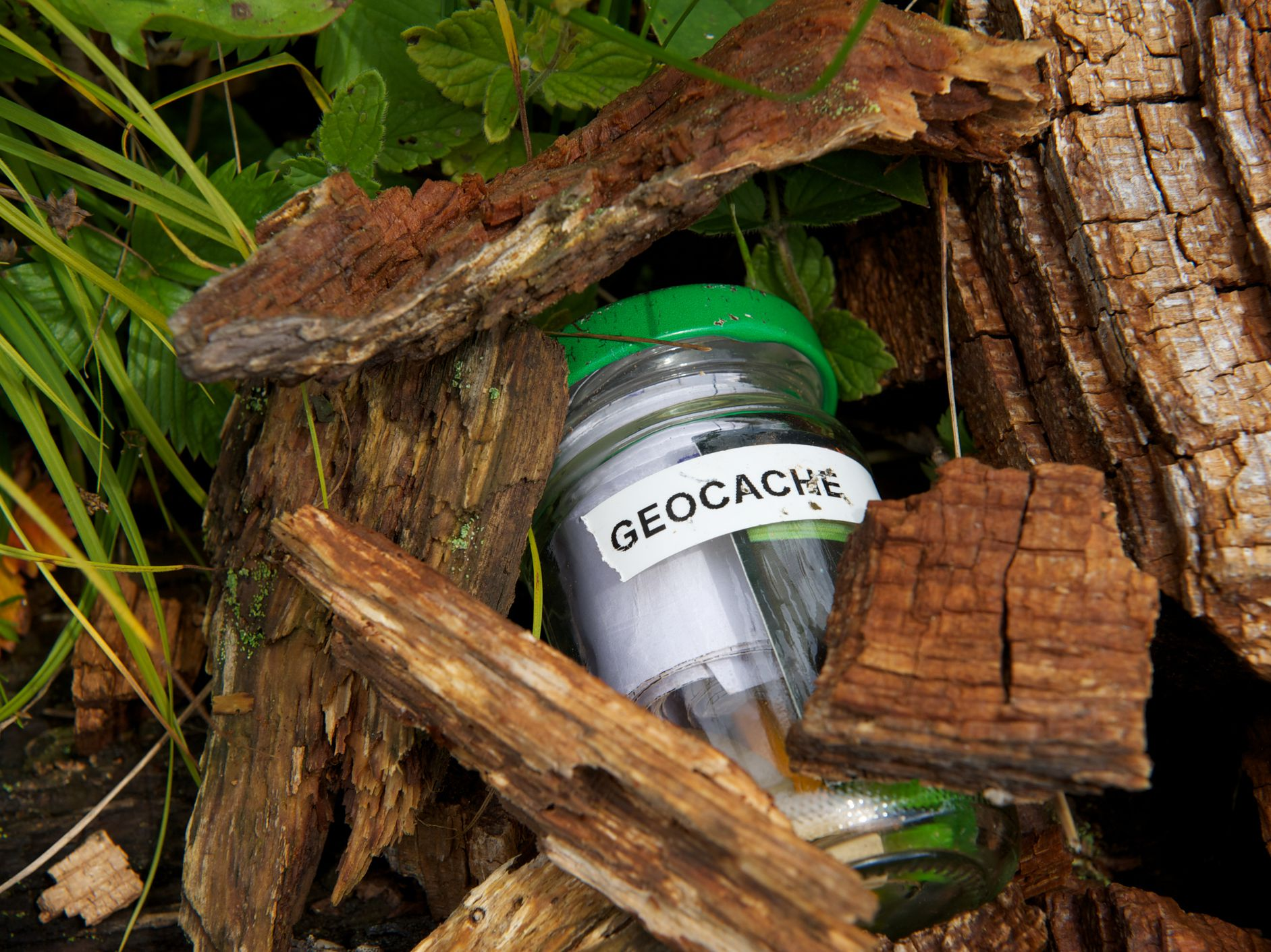 What Is Geocaching What S Inside A Geocache Box