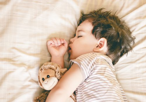 Toddler sleeping and holding a toy monkey