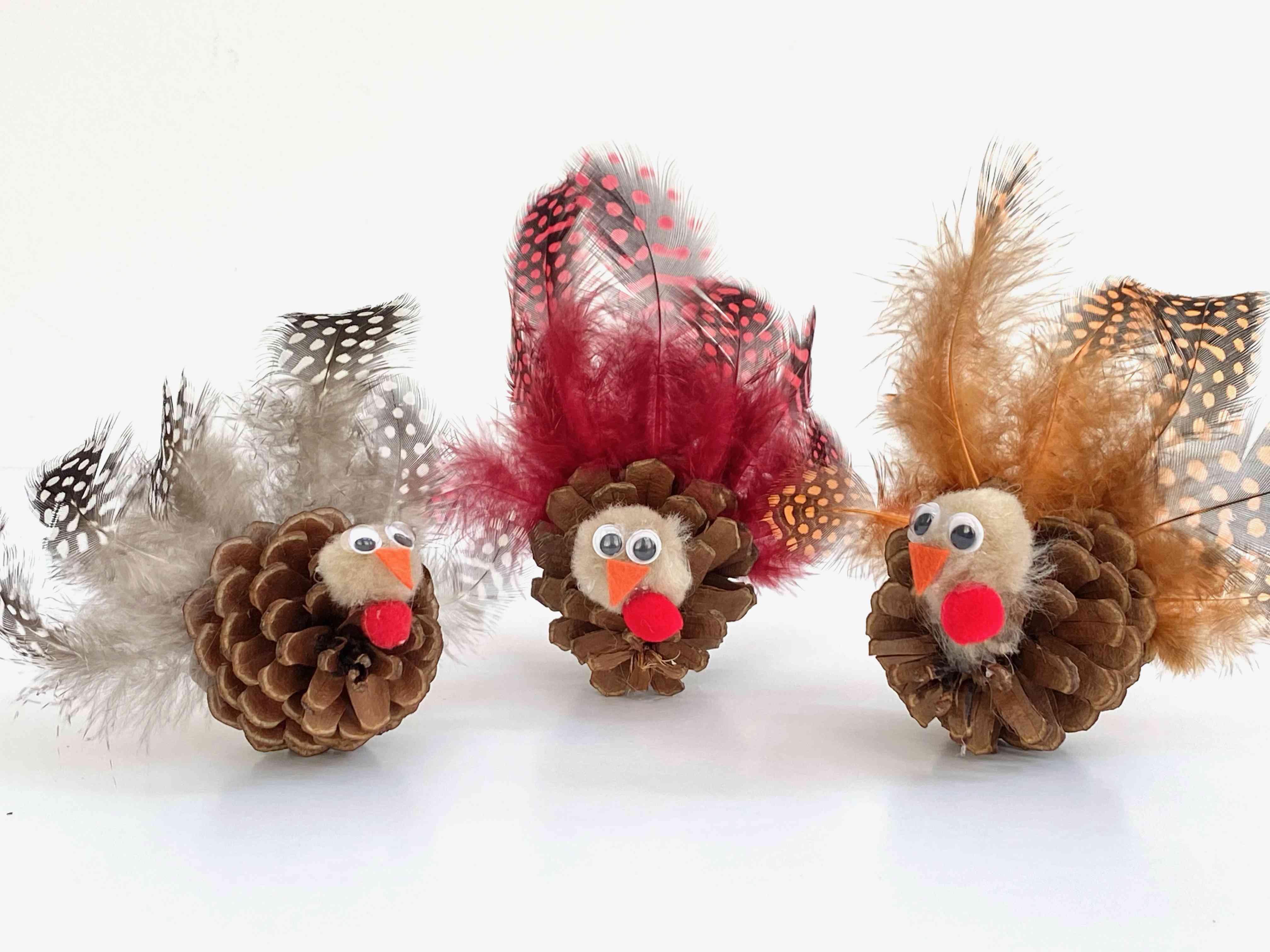 Turkey pinecones