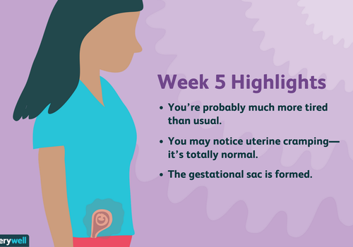 week 5 pregnancy highlights