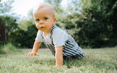 Baby boy crawling in grass