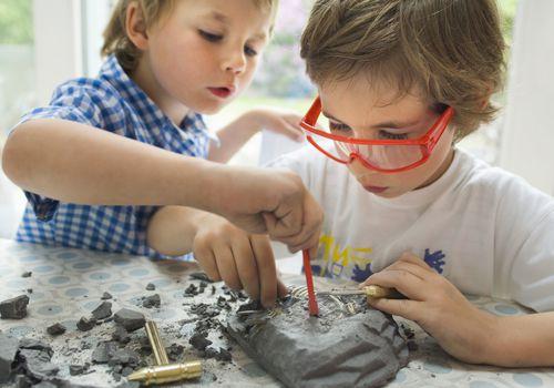boys dig fossil