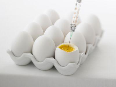 Syringe injecting fertility drugs into an egg