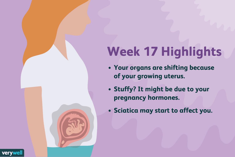 week 17 pregnancy highlights