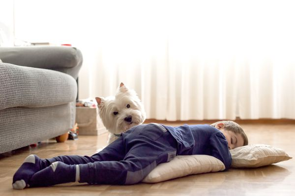 child sleep guidelines - boy sleeping on floor with dog