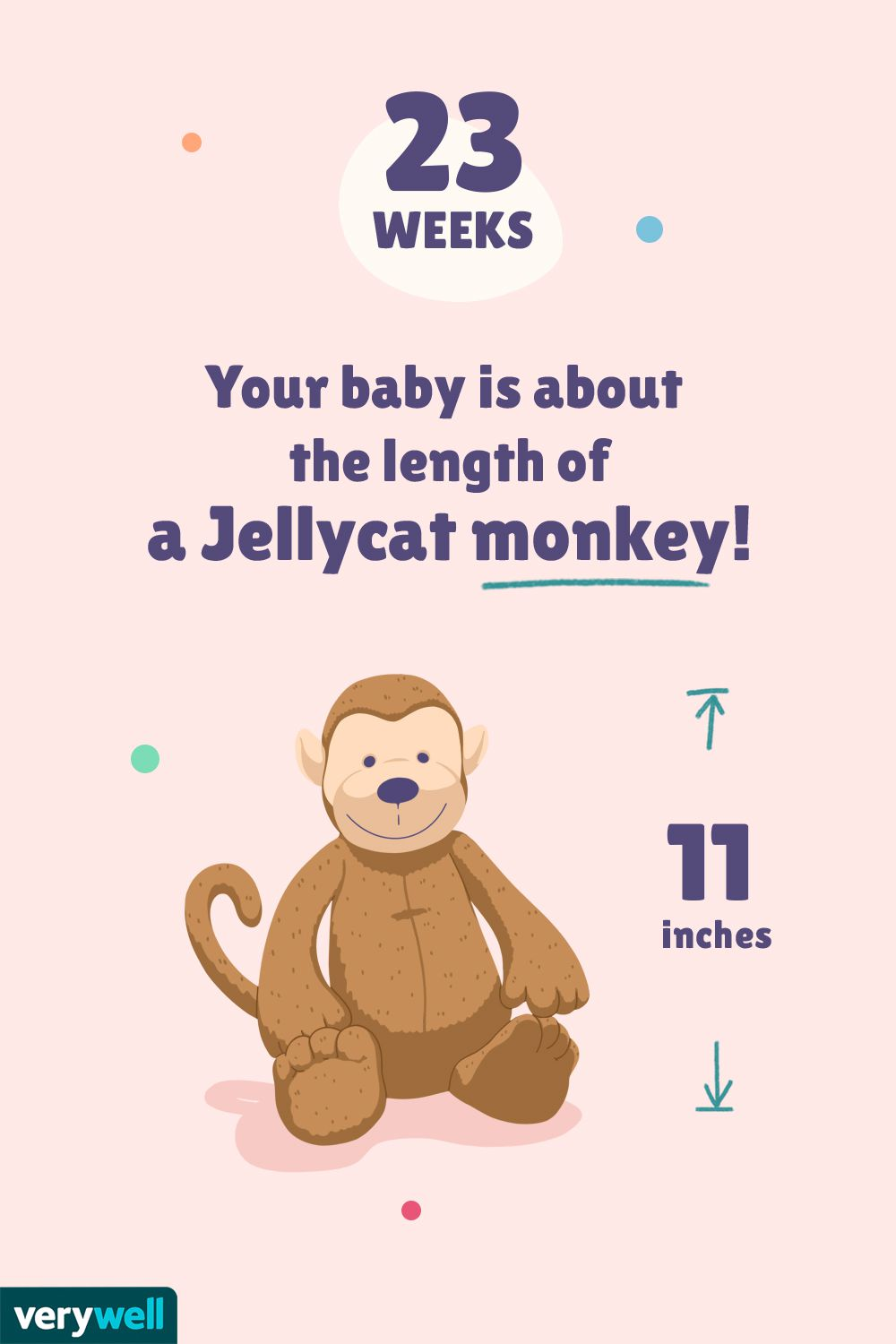 At 23 weeks pregnant, your baby is about the length of a Jellycat monkey!