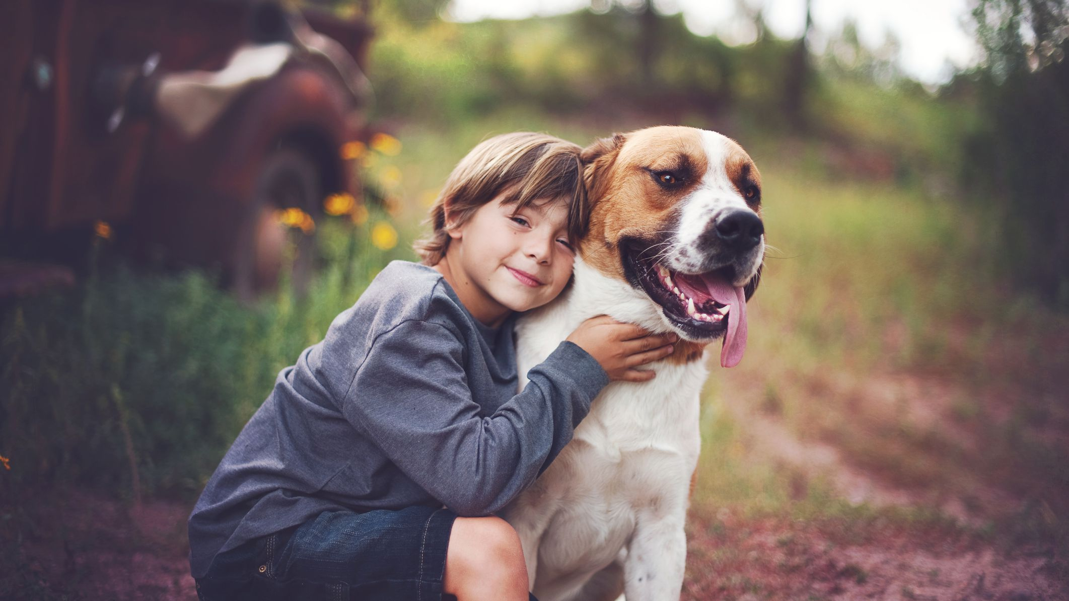 Service Animals for Children With Special Needs