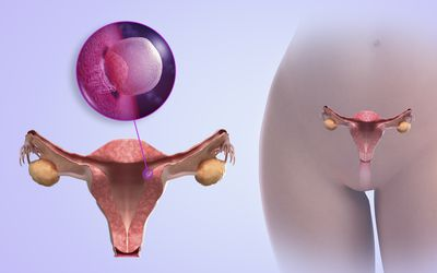 Potential Causes of Bleeding During Pregnancy