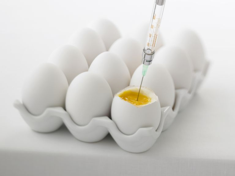 Syringe injecting fertility drugs into an egg