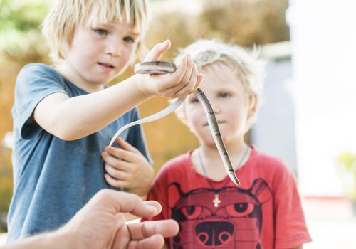 Kids playing with a snake?