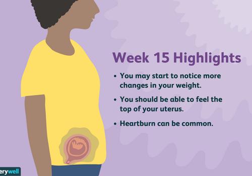 week 15 pregnancy highlights