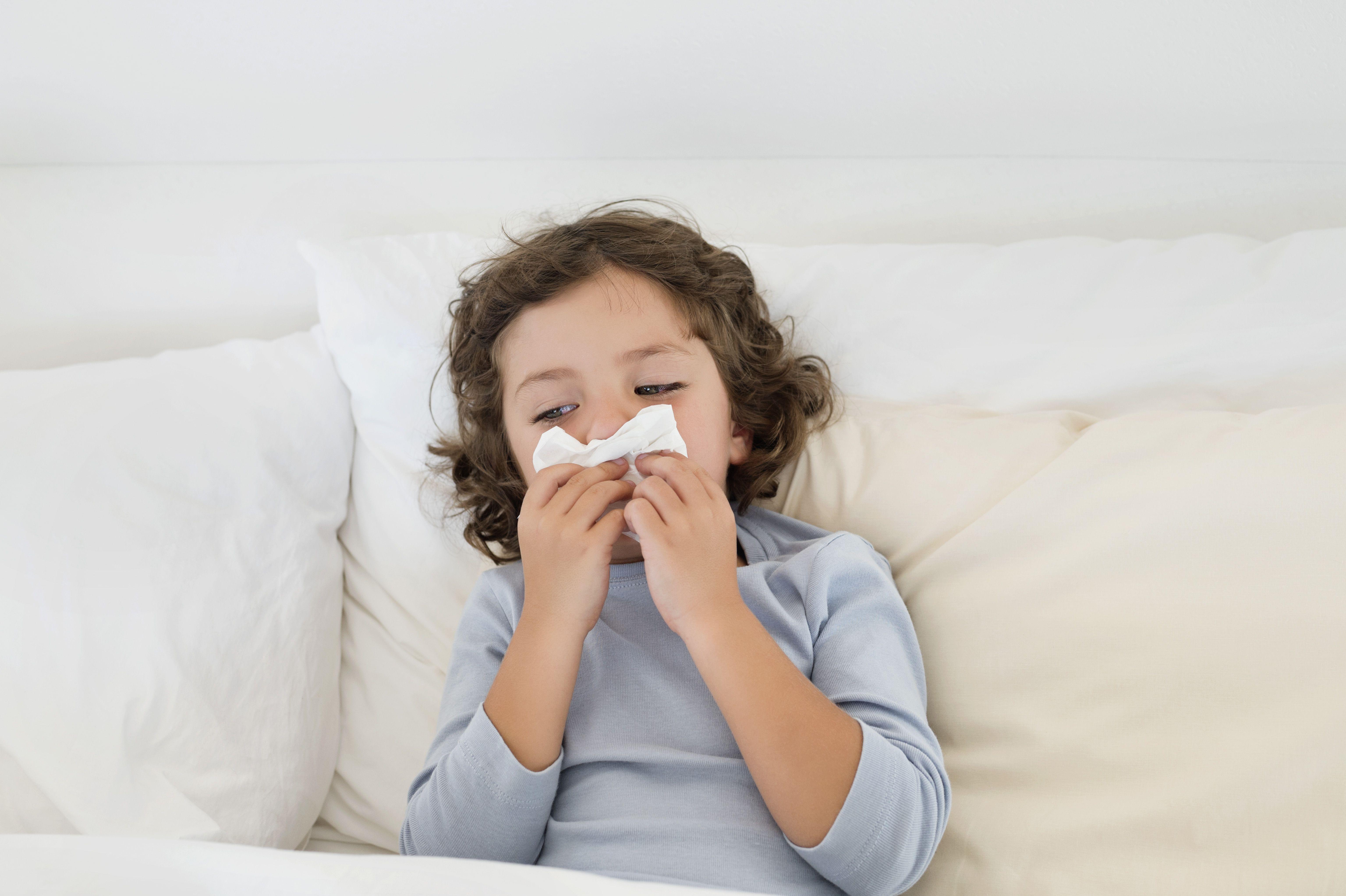 Controlling Indoor Allergies And Allergens